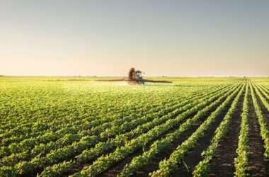 Dron w rolnictwie, podczerwień - FlyRecord Aerial Solutions